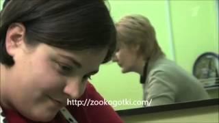 Стрижка собак и кошек от компании Зоосалон Коготки - видео 1