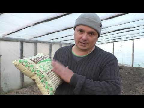 Как улучшить истощённую почву. Это нужно сделать осенью!