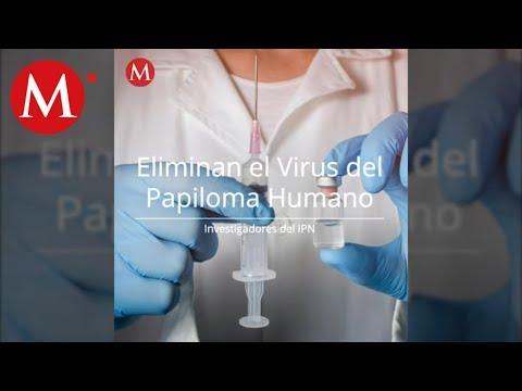 Veruca papillomavirus
