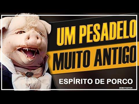 ESPÍRITO DE PORCO.wmv