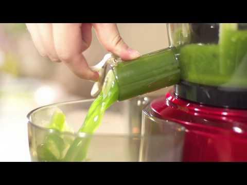 SKG 1345 Professional Whole Fruit Slow Juicer