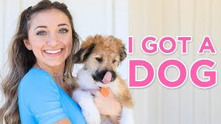 We GOT A PUPPY! | Identical twins get a dog!