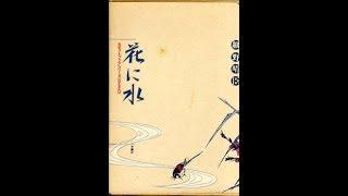 細野晴臣-花に水[waterforflowerharuomihosono]