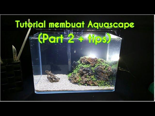 Tutorial Membuat Aquascape Untuk Pemula (Part 2 + tips dan cara perawatan)