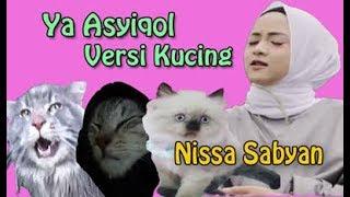 SABYAN - YA ASYIQOL (CAT/KUCING VERSION)