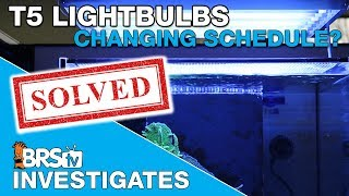 How often should we change T5 bulbs? Part I | BRStv Investigates
