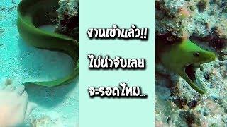 รวมคลิป Fail พากย์ไทย #69