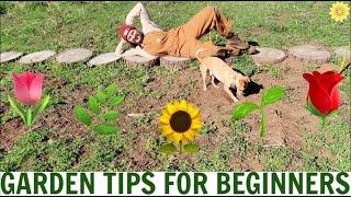 HOW TO GARDEN FOR BEGINNERS | MY BEST TIPS FOR STARTING A GARDEN