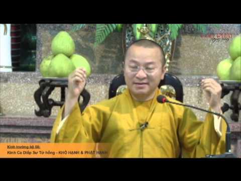 Kinh Trường bộ 08 - Kinh Ca-diếp Sư tử hống – Khổ hạnh và Phật hạnh (05/06/2014) - Thích Nhật Từ