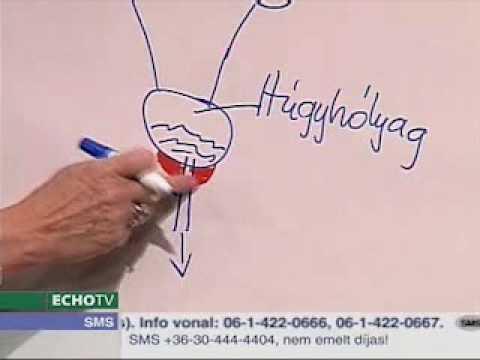 A prostatitis az ejakuláció átadása