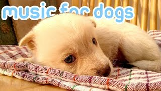15 HOURS of Soothing Anxiety Music for Dogs and Puppies! 🐕💤