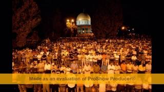 تحميل اغاني Asala ana El qods 2010 - اصالة انا القدس 2010 MP3