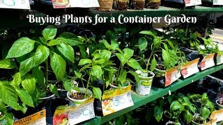 Buying Plants For A Container Garden | Backyard Deck Container Gardening | Whats Up Wednesday!