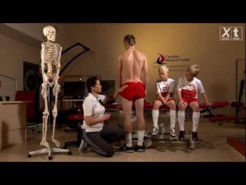 Ile reszta pomiędzy szkolenia jednej grupy mięśni