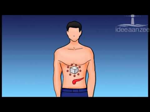 Gesalzene Forelle in Diabetes