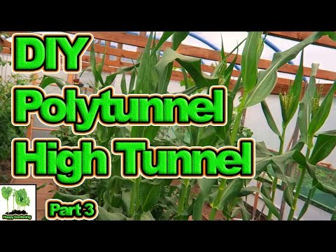 , title : 'How To Build A Cheap DIY / Home Made Polytunnel, Greenhouse, High Tunnel. Part 3