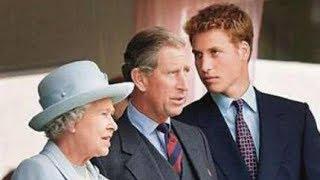 为什么戴安娜独爱哈里王子?只因34年前,查尔斯说过这一句话|卡米拉