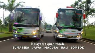 Best Scorpion Holidays Bus
