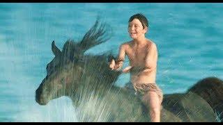 男孩在荒岛救了一匹黑马,把它训成顶级赛马,神一样的故事
