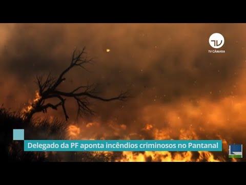 Delegado da PF aponta incêndios criminosos no Pantanal - 25/03/21