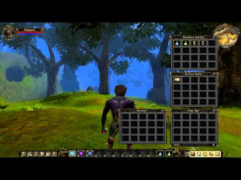 Прохождение Dungeon Lords MMXII - Начало - Эпизод #1