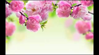 Yaad Hai Na Lyrics – Arijit Singh – Raaz Reboot360p