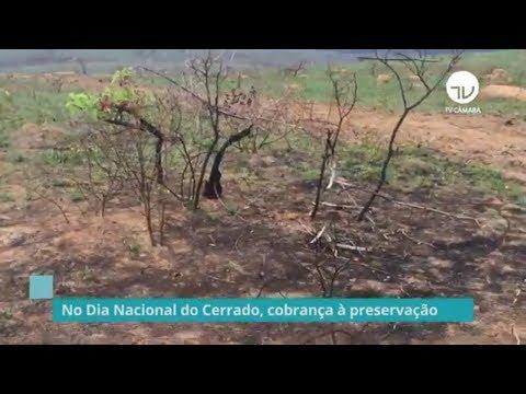 Câmara realiza seminário sobre importância de conservação do Cerrado - 11/09/19