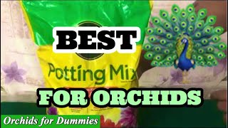 Beginners Guide to Best Potting Mix for Phalaenopsis Orchids for Optimal Growth