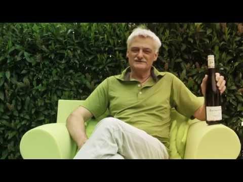 VIF - Wein des Monats Juni 2015: Grüner Veltliner Gernlüssen vom Weingut Zimmermann aus dem Kremstal