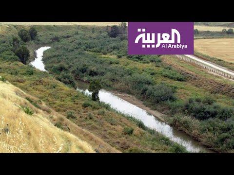 العرب اليوم - شاهد: الباقورة والغمر تعود إلى أحضان الأردن