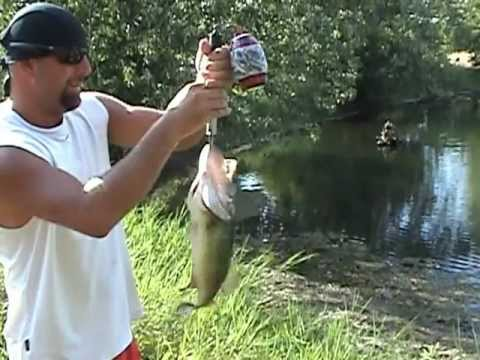 Pond fishing:  3 3/4 lb Bass on Strike King Rage Toad