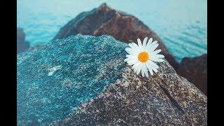 "Relaxing Music, Peaceful Music, Instrumental Music ""Looking Seaward"" by Tim Janis"