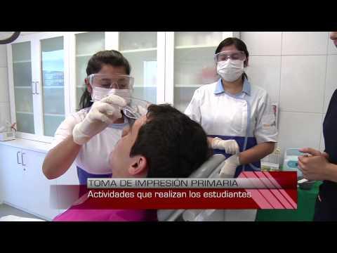 Regulación de la presión de la sangre humana