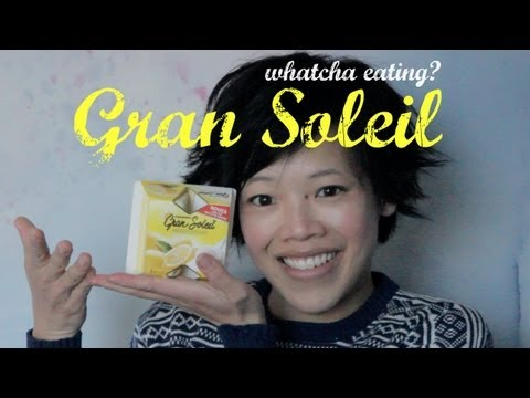 Gran Soleil Lemon Frozen Dessert: Whatcha Eating? #92