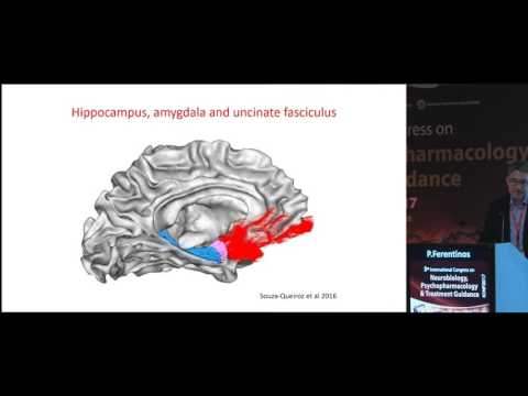 Panagiotis Ferentinos - Greece The neuropsychological and neuroimaging footprint of early life stress