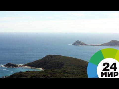 После обнаружения субмарины «Сан-Хуан» в Аргентине объявили траур - МИР 24 онлайн видео
