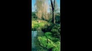 Video del alojamiento Casa Rural Nacimiento del Huéznar