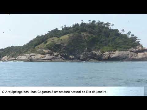Projeto Baleias e Golfinhos do Rio de Janeiro: PEDRA NÃO BORRIFA