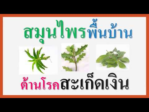 แปล neurodermatitis
