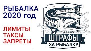 Штрафы на запрет рыбной ловли 2020
