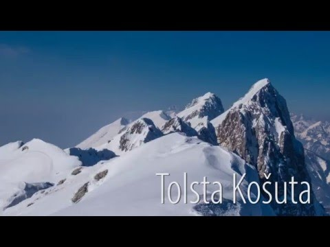 Tolsta Košuta