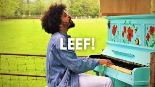 Chesron   LEEF! (Officiële Videoclip)