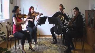 Video Illegal String Quartet  - Smyčcové kvarteto - Ukázka