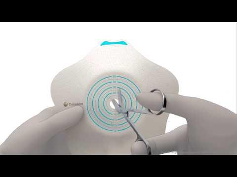 Sensura Mio Convex Flip 2 delig click