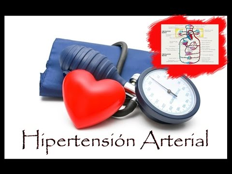 La presión arterial del niño 8 9 años