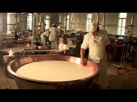 Queso Parmesano Reggiano - Producción e Historia