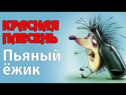 Красная Плесень - Пьяный ежик