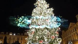 Weihnachtsbaum Ouvertüre - Weihnachtsmarkt in Prag Tschechien