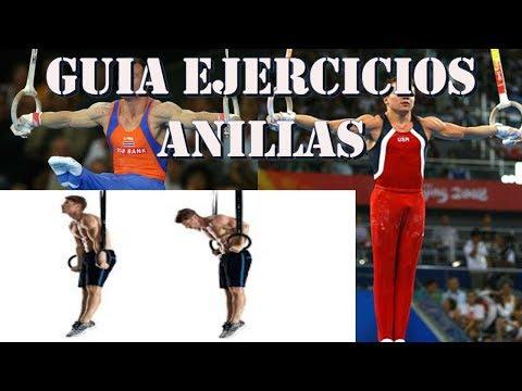GUÍA EJERCICIOS BÁSICOS en ANILLAS.