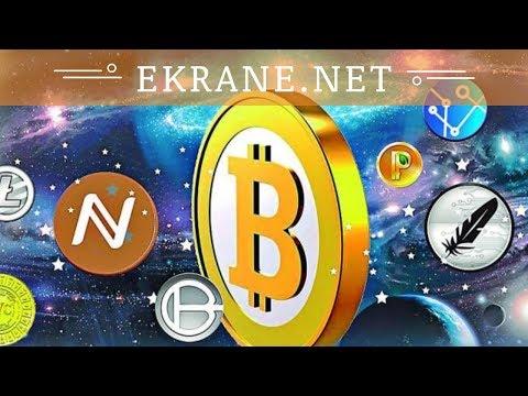 Ekrane.net отзывы 2018, mmgp, обзор, ключ регистрации, новинка Финансовый учёт